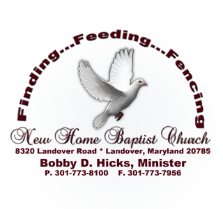 Logo for New Home Baptist Church with white dove flying in the center.