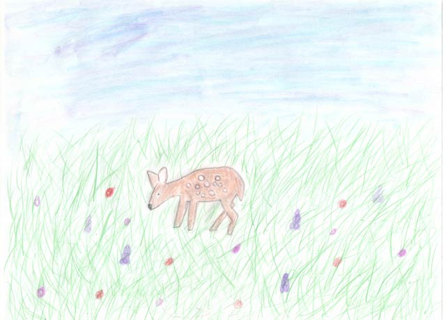 Drawing of a deer in the meadow by Katia S.J.
