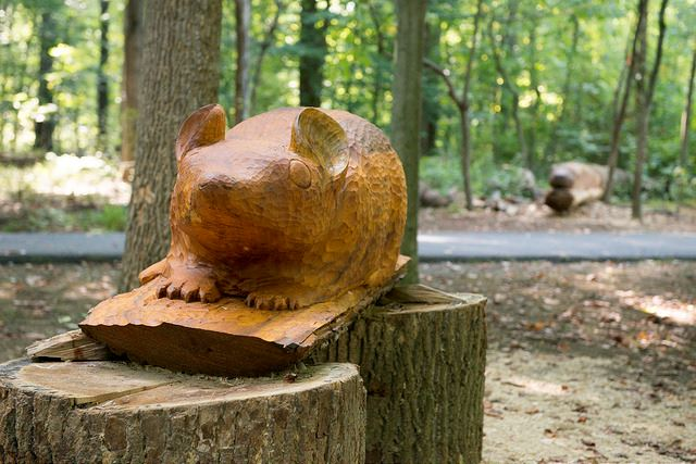 Wooden Sculpture of a cat
